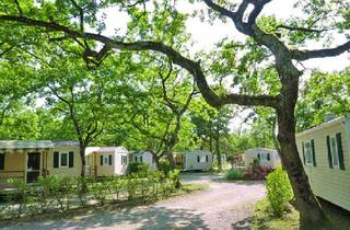 Evian, Camping Saint Disdille