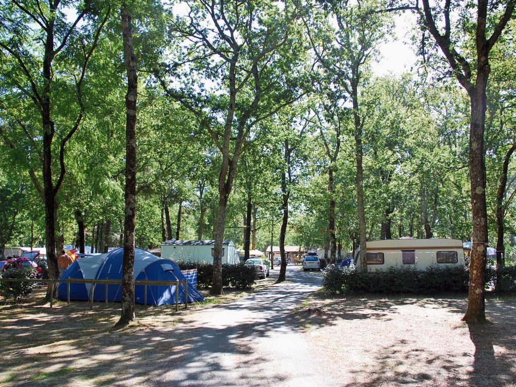 Camping 3* Les Genets