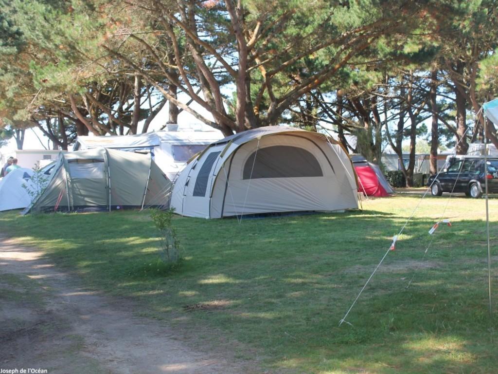 Camping Le Grand Pre (Saint-Pierre-de-Maillé à 7 km)