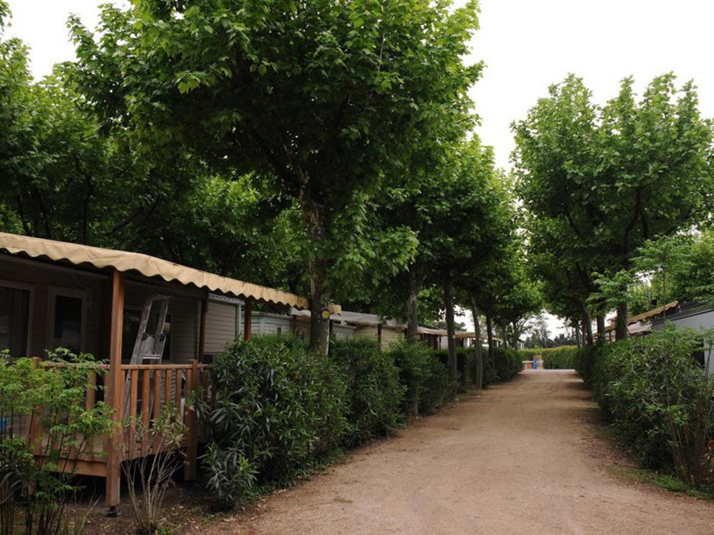 Camping Lou-Comtadou