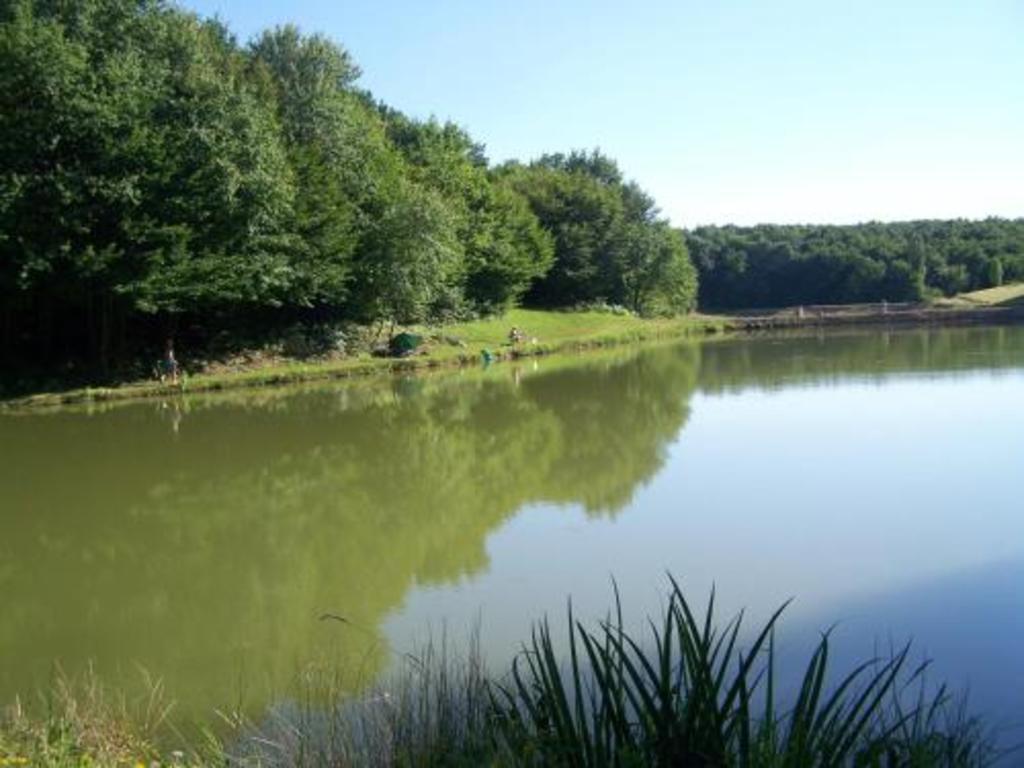 Camping Parc De Loisirs Les Petites Minaudieres (Senillé-Saint-Sauveur à 7 km)