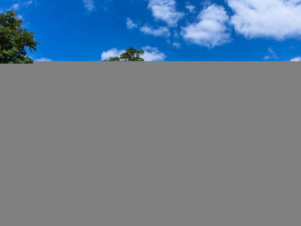 Résidence le Domaine du Golf d'Albret