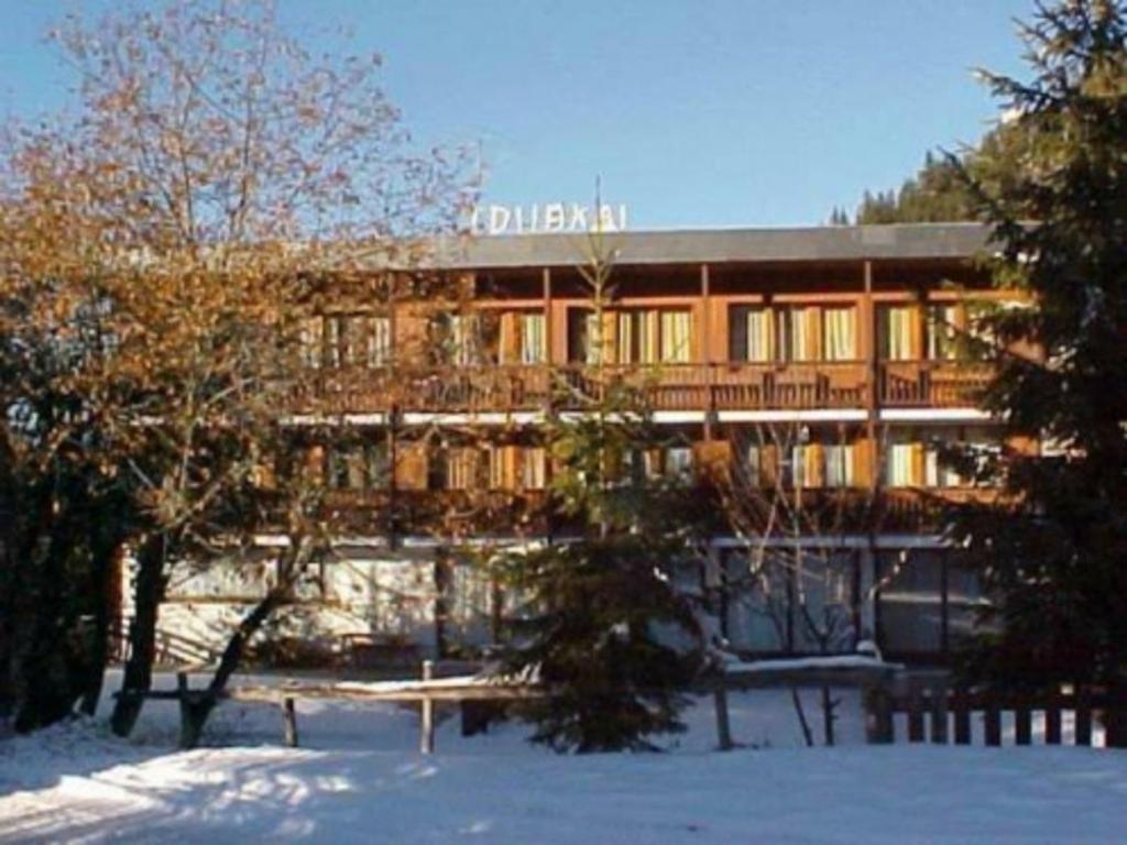 Résidence Quartier Altitude 1600 - Quartier du Morel
