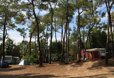Camping Du Moulin De La Gassotte (Saint-Savin à 6 km)