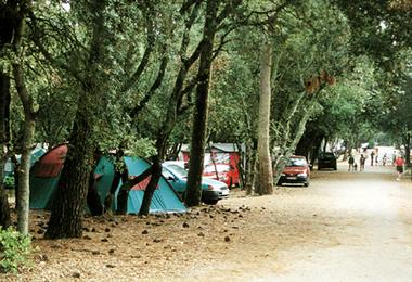 Camping Gcu - La Tranche Sur Mer