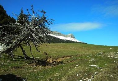 Camping Les Gites Fialoux (Romeyer à 4 km)