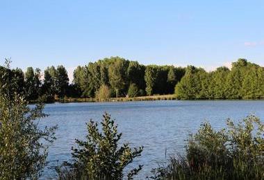 Camping Les Rulieres (Saint-Valérien à 13 km)