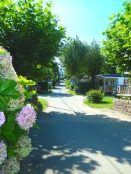 Mobile home rentals in Camping Harrobia