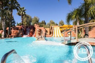 Apartment holiday in Camping Les Palmiers